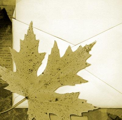 Meçhul Kızın Mektupları