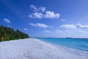 Duygu Adası