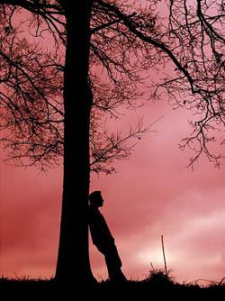 Asrın Komedyeni (Asrın Adamı) - Mevlüt Çetin
