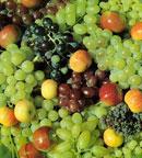 Yaz Meyveleri